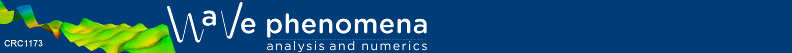 wave phenomena logo